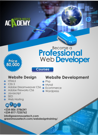 Web Design Training Company In Lagos Greenmouse